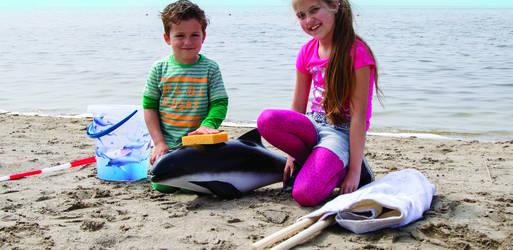 Kinderen redden dolfijn